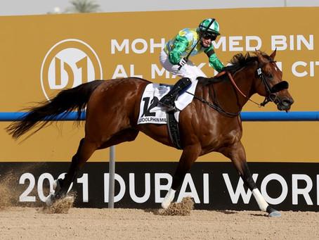 كأس دبي العالمي للخيول بنسخته الـ25