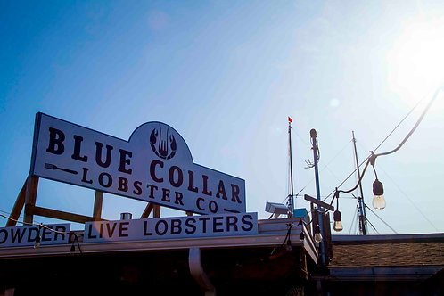 Blue Collar Lobster Co.