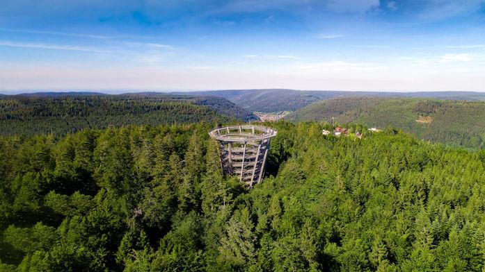 BWP-SW_AGroß-0683_LuftaufnTurm-_Sommer@e