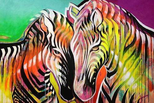 'Zebras'