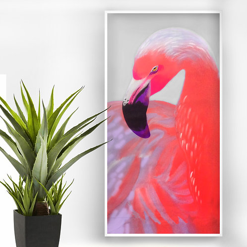 'Pink flamingo'