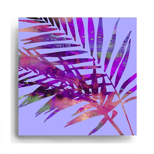'Purple palms'