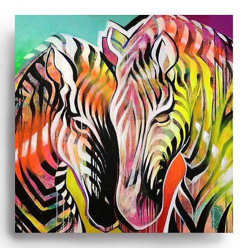 'the zebra lovers'