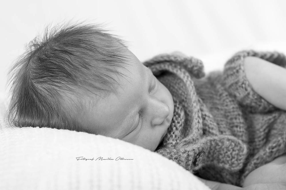 Nyföddsfotografering