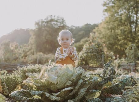 Barnfotografering med Lova