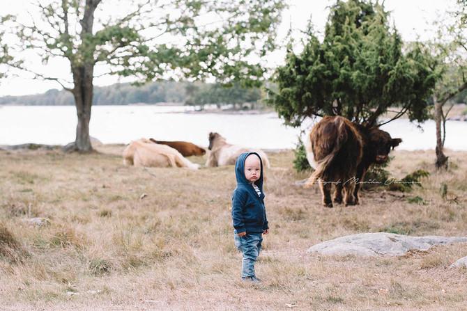 Har hittat till Blekinges vackraste plats nu tror jag, Torkö! -barnfotografring