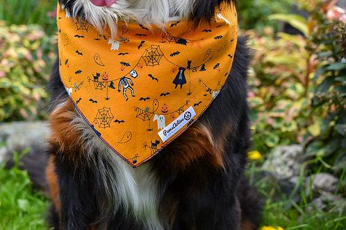 Ready to Pawty -- Orange