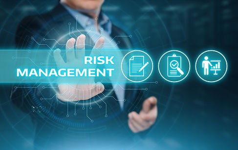 Risk Management Strategy Plan Finance In