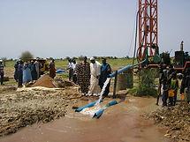 Senegal.jpg