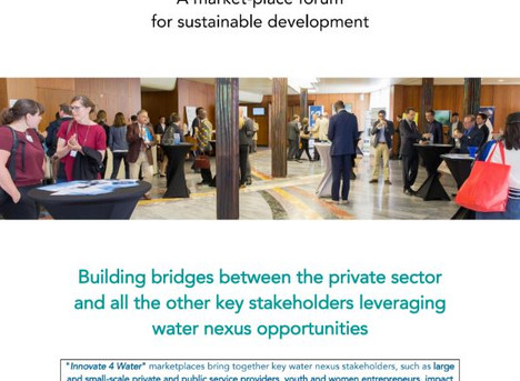 BUILDING BRIDGES BETWEEN THE PRIVATE SECTOR AND ALL THE OTHER STAKEHOLDERS LEVERAGING WATER NEXUS OP