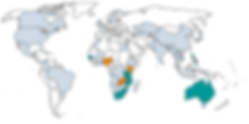 carte-monde-I4W-frontieres.png