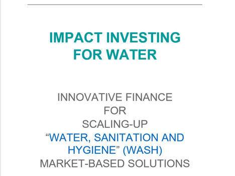 Launch of Waterpreneurs White Paper at the World Water Forum in Brasilia