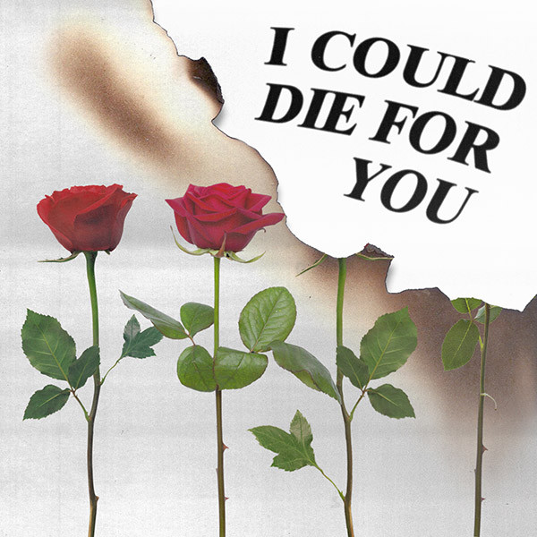 I Could Die For You Cover Art