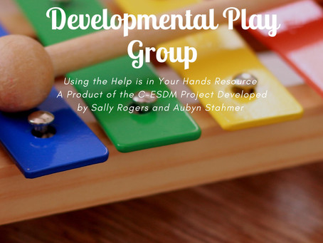 Parent and Toddler Developmental Play Group
