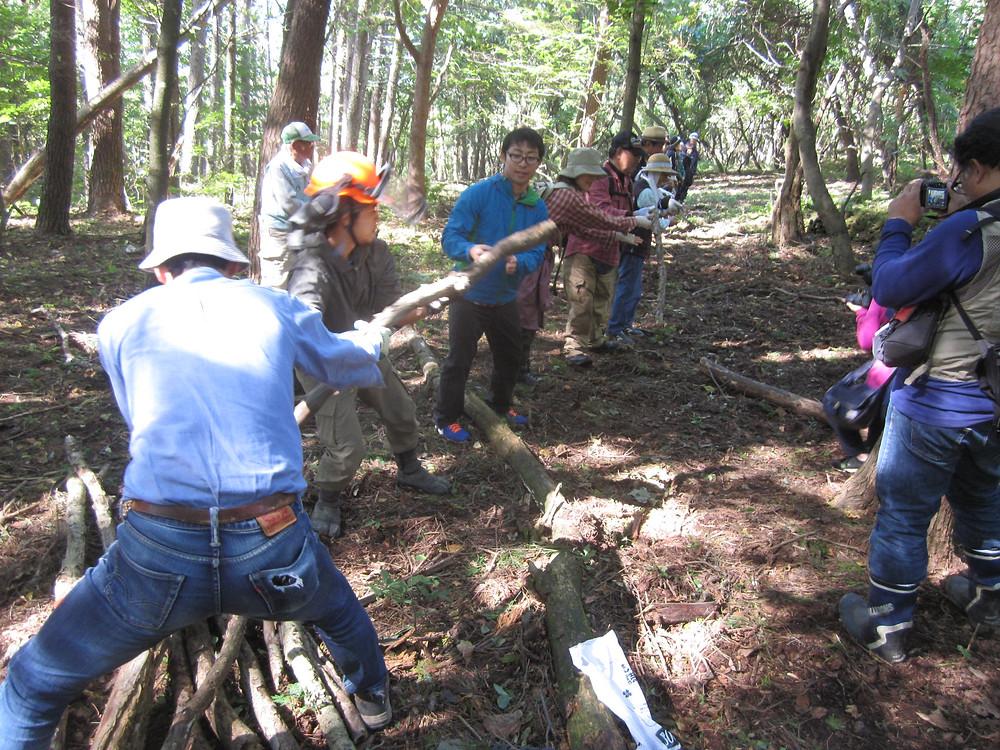 森林作業療法体験~皆で協力して木を運ぶ~