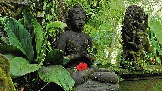 Meditación budista en postura del loto. Buda completa el desapego. Yoga en Guadalajara y Cabanillas del Campo.