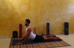 bhujangasana  guadalajara yoga
