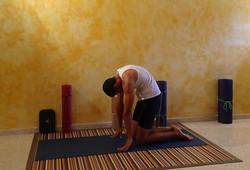 conejo  guadalajara yoga puzzle