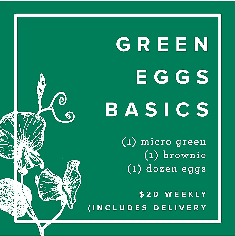 Green Eggs Basics.jpg