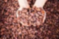 Enliven Beans 1.jpg