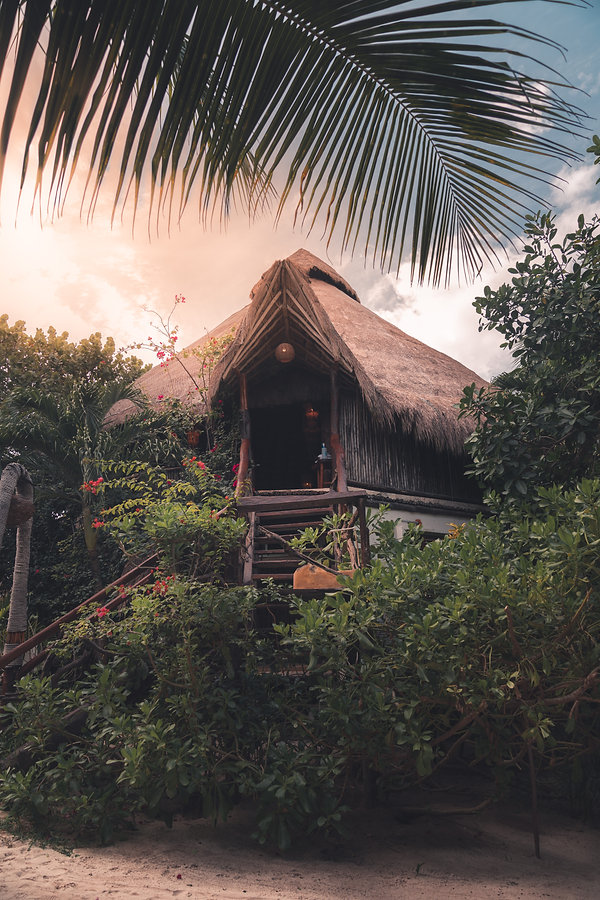 Hut in the Tulum Jungle