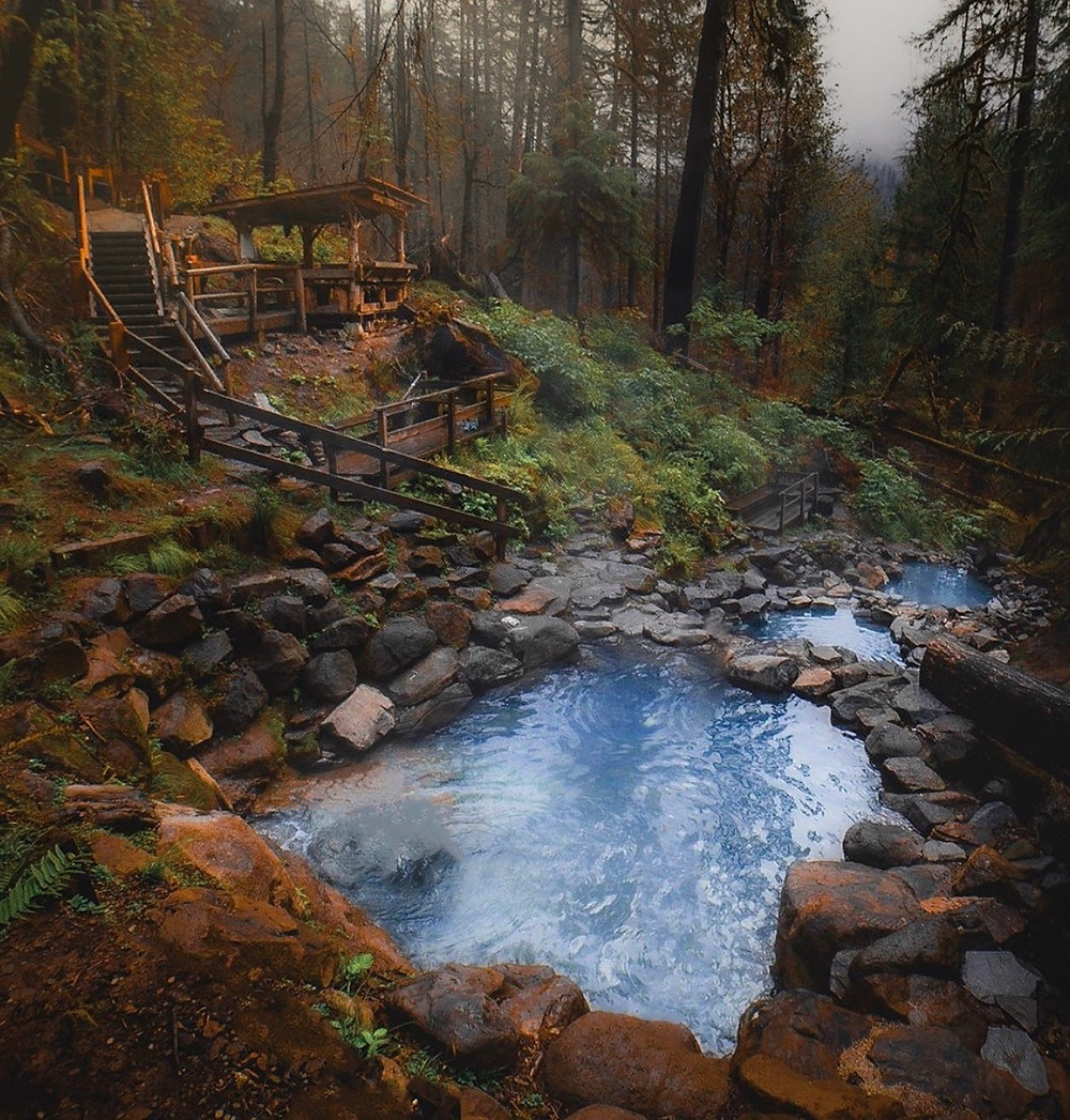 Hot Springs in the Oregon Woods