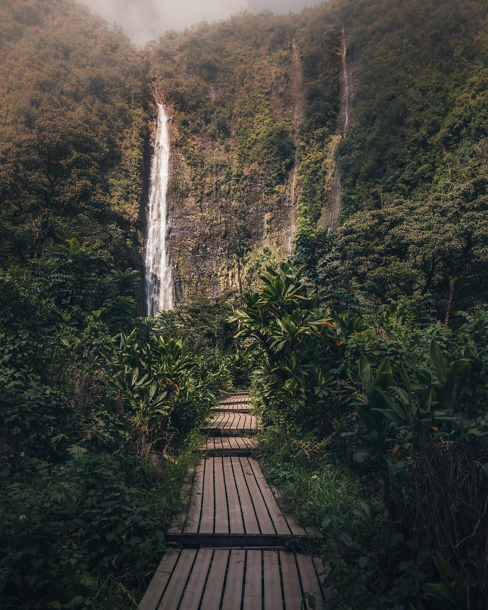 The path to hike to the Waimoku Falls in Maui