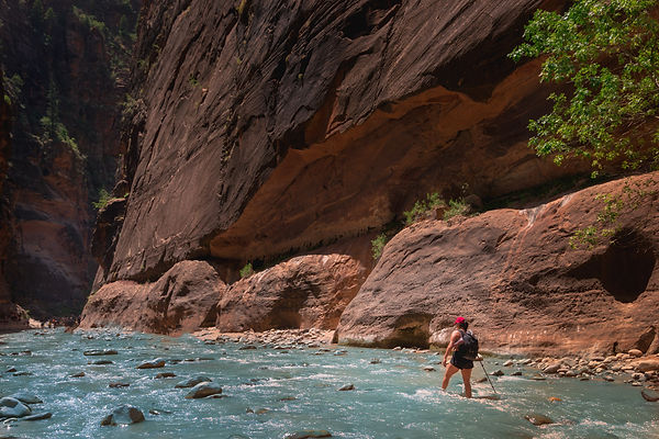 Hiking through the rushing water of the Narrows in Zion National Park, Utah