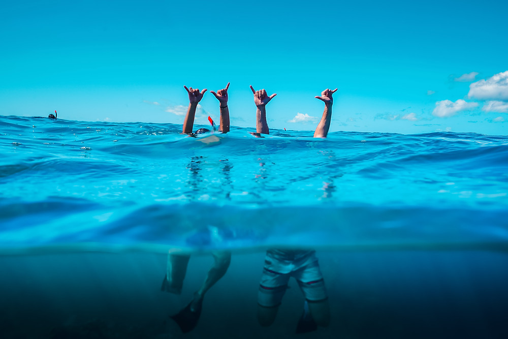 two snorkels with their hands out of the water giving the Shaka