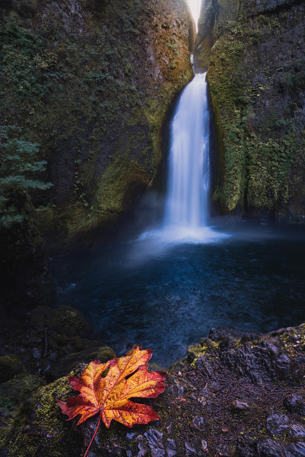 Fall foliage at Wahclella Falls in the Columbia River Gorge in Portland, Oregon