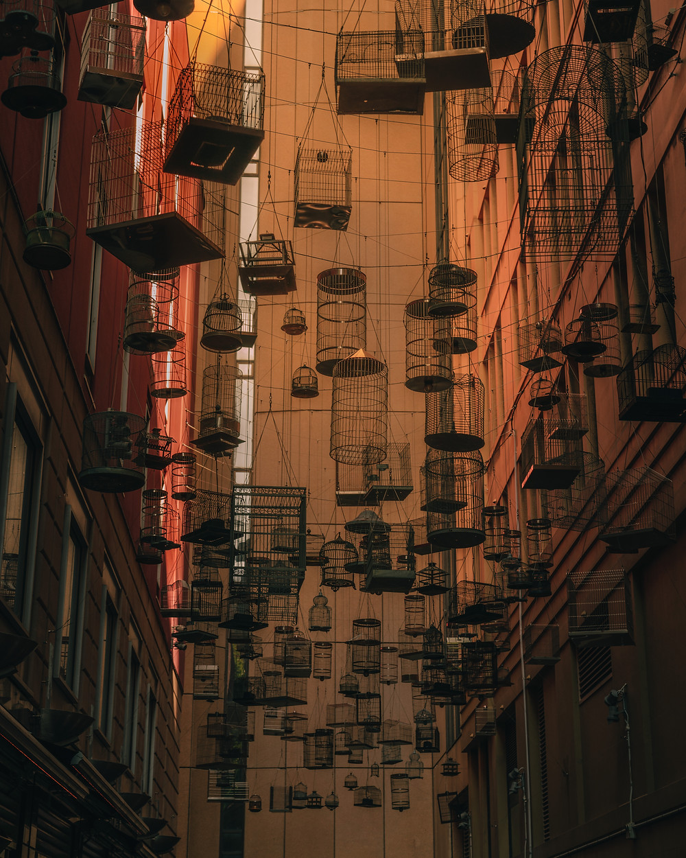 Angel Place Alley Birdcages