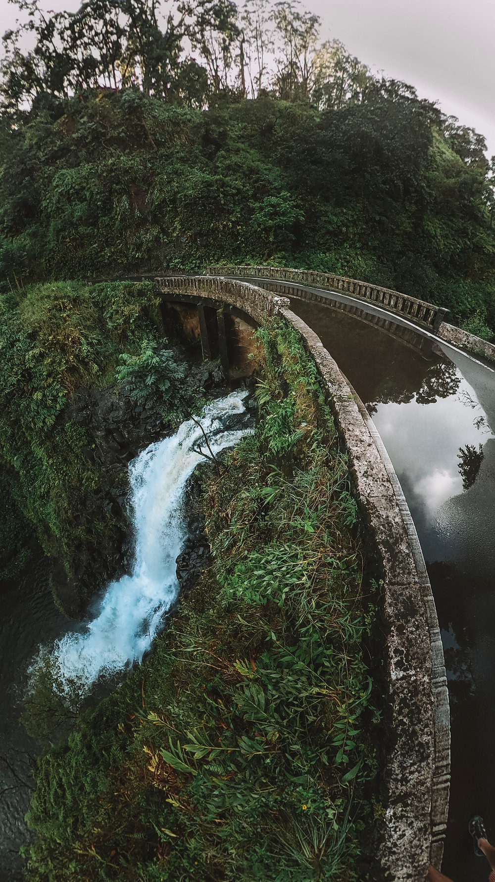 Bridge over a waterfall in the Maui Jungle