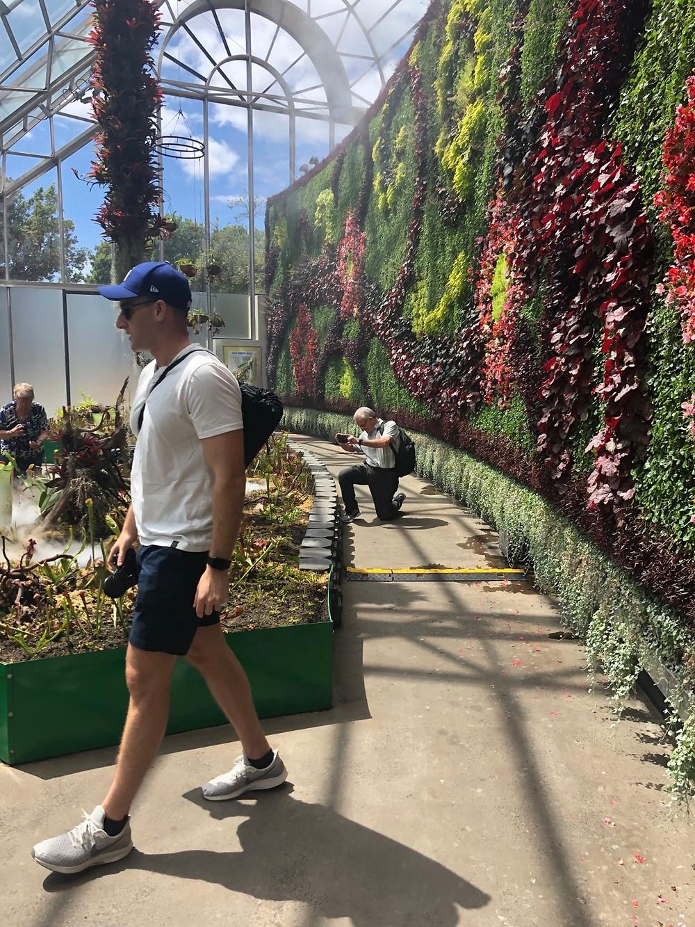 Man walking in the royal botanic garden exhibit