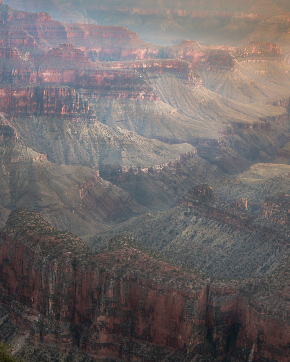 view in to the grand canyon