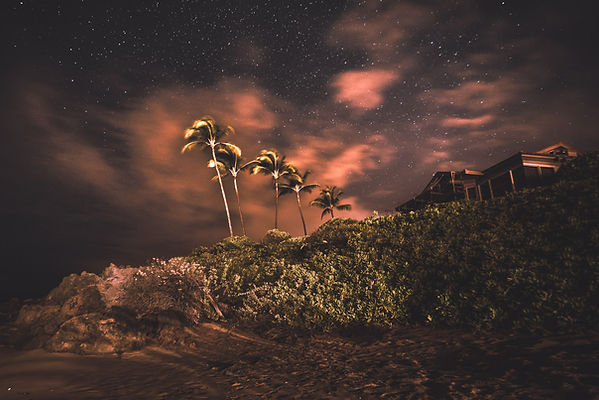 Palm trees and sandy beach under a full sky of stars in Hawaii