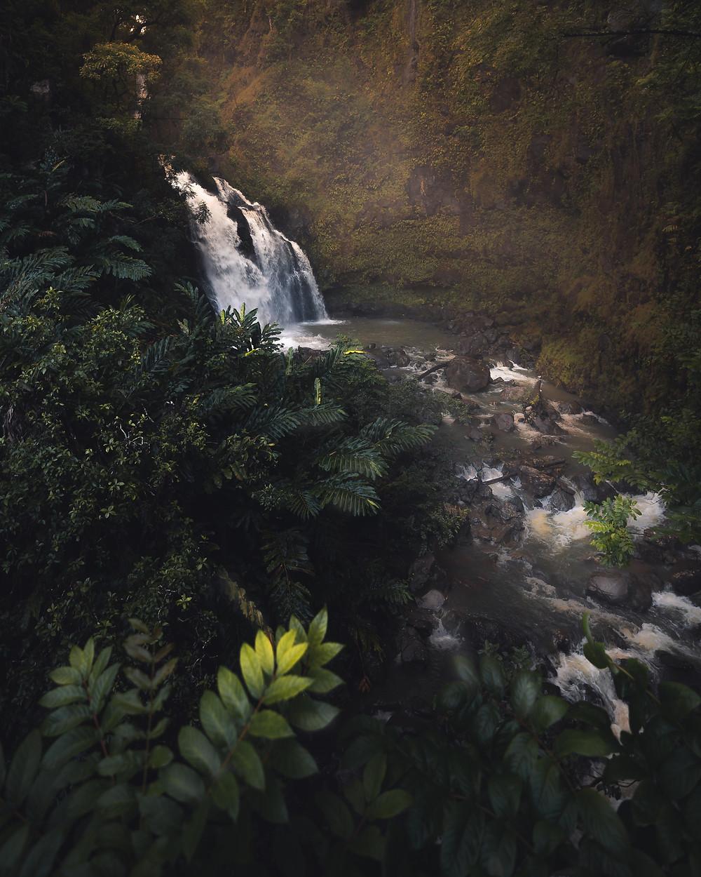 waterfalls and jungle vegetation in sun light