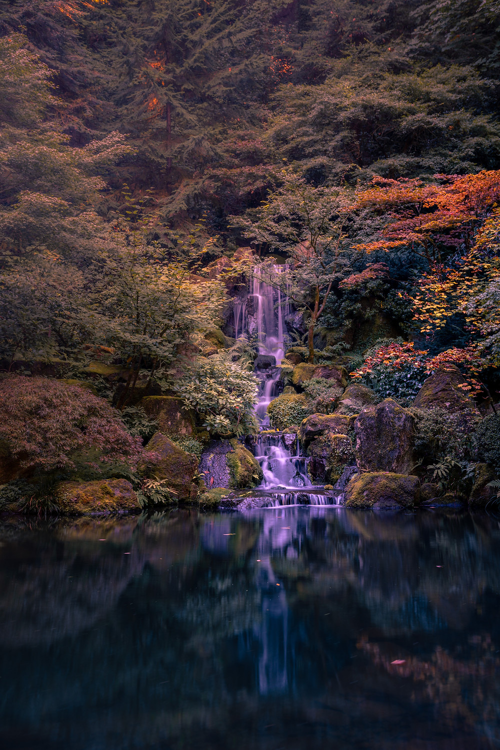 Fall colors and waterfall in the Portland Japanese Garden