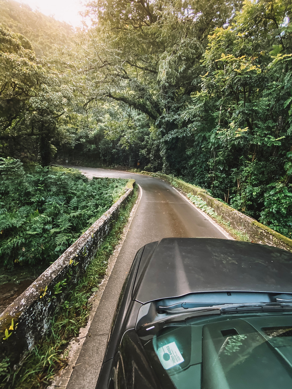 Car driving over a single lane bridge in the jungle on the road to Hana