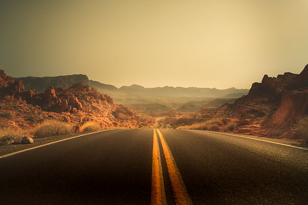 The winding road through the desert of the Valley of Fire National Park