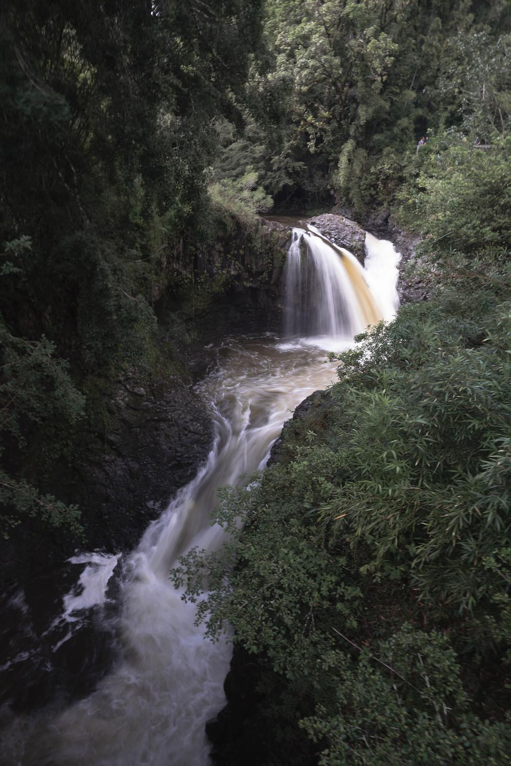 Waterfalls in the Hawaii jungle