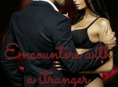 Encounters With A Stranger by Rene Pleijzier