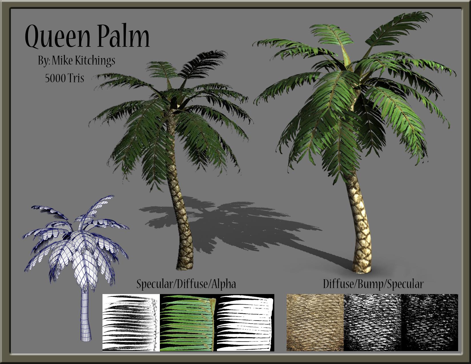 Palm Tree Pres