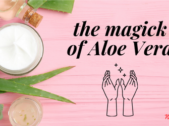 The Magick of Aloe Vera
