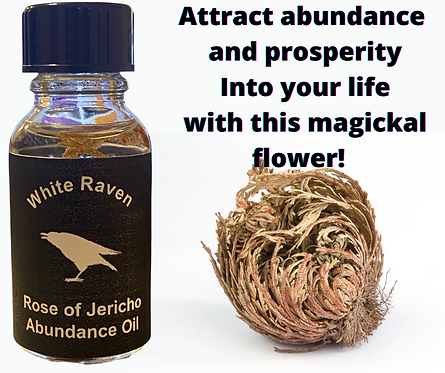 Rose of Jericho (Abundance Oil)