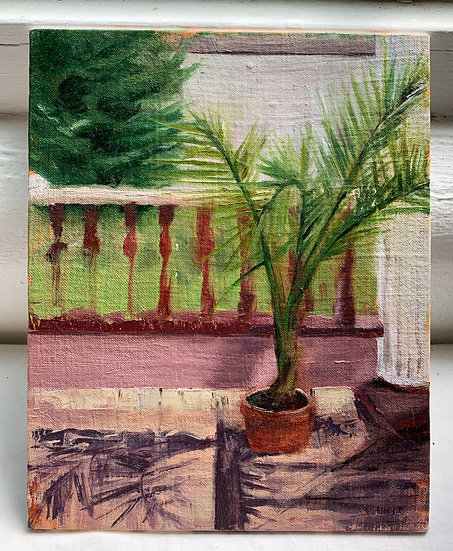Palm on the Porch