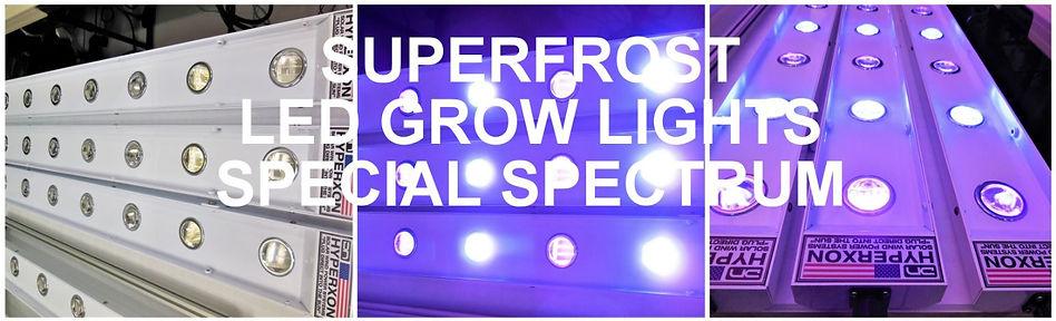 SUPERFROST LED IMG.JPG