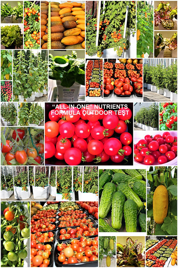 ALL-IN-ONE-NUTRIENTS-AND-GROW-MEDIUM.jpg