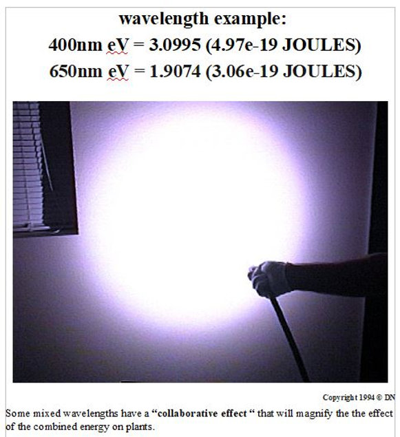 LIGHT METER LED GROW LIGHTING SYSTEMS 12