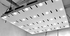 LED GROW LIGHT 600W .JPG