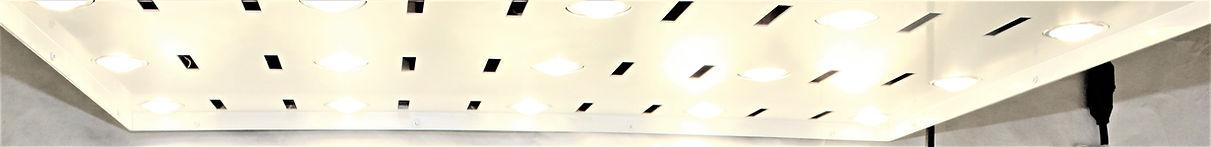 600W LED GROW LIGHT 3.JPG